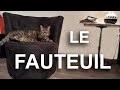 LE FAUTEUIL -  PAROLE DE CHAT
