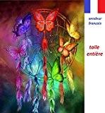 5D Broderie diamant toile entière, kit complet VENDEUR FRANÇAIS (papillons multicolores 40 x 47)