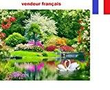 5D Broderie diamant toile entière, kit complet VENDEUR FRANÇAIS (paysage et cygnes 40 x 33)