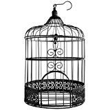 Au plaisir des yeux - Tirelire mariage - Urne cage à oiseaux en métal noir