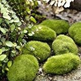 bidyn (TM) en mousse vert mousse Faux Pierre Rock Micro Paysage décoratif décoration de Noël Maison Jardin Décoration DIY Micro ...