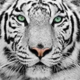 DIY Handmade Diamond Embroidery Painting Tiger