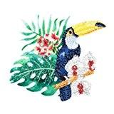 Oiseau Des Iles Fleur Galerie Creation