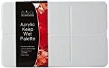 Frisk acrylique Keep-Wet Palette