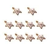 Generic Lot 10pcs Pendentifs Forme Etoiles de Mer Coquillage Perles Fantaisie pour Fabrication de Bijoux Collier Bracelet - Blanc beige