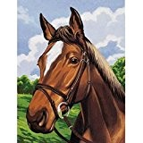 Kit Canevas Portrait cheval - 29