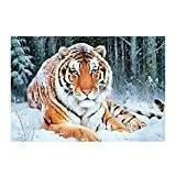 LianLe®DIY 5D Animal Tigre et Lion Broderie Diamant Cristal Peinture Décor Maison 30*40CM