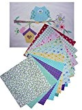 Lot de 10 tissus thermocollants (14cm x 14cm) pour Appliqué, Patchwork, Loisirs Créatifs