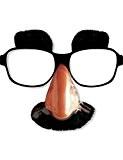 Lunettes avec nez, moustache et sourcils adulte