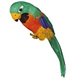 56a97a7426dde Perroquet de pirate Oiseau décoratif avec plumes vert décoration ara de  fête pirate perruche ornement fête