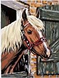 Reeves - 691219 - Peinture Par Numeros Pour 8 Ans Et Plus Cheval Dans Son Box