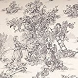 Tissu toile de Jouy grande largeur - Noir & ivoire