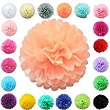 TtS lot de 5 (pêche clair) Tissu Papier Pom Pompons Boules de Fleurs Papier de soie Boule Balle Pr Mariage ...