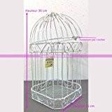 Urne de mariage Cage à oiseaux, Volière en métal blanc, 30 x 15 cm, pour cartes de voeux