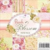 Wild Rose Studio 15,2x 15,2cm Papier, Peach Blossom