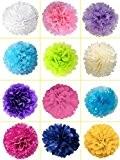 10x Pom pom en papier de soie de haute qualité (25cm) parfait pour Mariages, Occasions, decor, et cetera