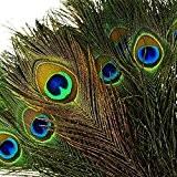 """100pièces Plumes de paon naturelles avec des yeux (10""""-12"""") Haute qualité de plumes de queue de paon pour la décoration"""