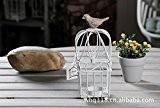 ameublement de maison européenne de cage de fer création chandelier ornement décoratif