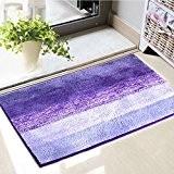anfayejia antidérapant Tapis de bain Tapis de douche Super Doux en microfibre pour salle de bain chambre cuisine Violet