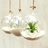 artlass Lot de 3Suspension Vse Terrarium en verre Bougeoir rond mariage Home Deco Diamètre 10cm