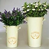 Barils fleurs les décorations de jardin maison fleur seau
