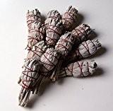 Batonnets de Sauge blanche - lot de 12 - batons / empaqueter / ballot / Encens WHITE SAGE 12 x ...