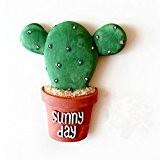 BESTOMZ Aimant Magnet Frigo Aimant Réfrigérateur Succulent Cactus plante aimants