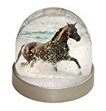 Black Horse en mer Globe de neige de dôme Waterball animaux cadeau de Noël