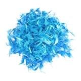 Boa de Plume Pelucheux Décoration Artisanale 6,6 Pieds de Long - Bleu