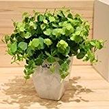 DSAAA Fleur Artificielle La Valeur Faux Faux Gazon Verdure Trèfle Fleur Décorative En Pot Bonsai ,Vert