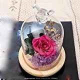 DSAAA La Vie Éternelle créative cadeau de fleurs roses Fleurs Boîte Garantie Cartouche Le verre fleur séchée le cadeau d'anniversaire ...