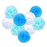eBoot Papier de Soie Boule Fleur Mariage Décoration, 10 Pouces, Pack de 9