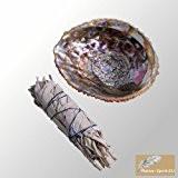 Ensemble: Baton Purificateur Sauge Blanche Moyen et coquille d'ormeau 12-14cm (abalone shell 5-6Inch)- Salvia Apiana - WHITE SAGE ML Smudge ...