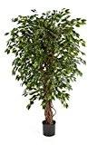 Ficus artificiel DAKU, 1670 feuilles vertes et troncs naturels, 120 cm - Plante artificielle / Ficus synthétique - artplants