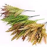 Generic Gazon Varech Plante Artificiel 5-Branches Feuillage Plastique Plante de Balcon Maison Jardin Décorative - Multicolor 2, 40cm