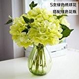 JHDH2-vases en verre transparent minimaliste moderne accueil salon décorations fleurs artificielles d'hortensias emulation Kit floral globale , bouteille verte
