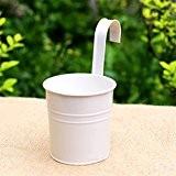 JUNGEN Pot Fleurs Pots en Fer Pot Culture Plante Suspendu Balcon Jardin Maison Décoration Blanc 1 PCS