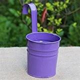 JUNGEN Pot Fleurs Pots en Fer Pot Culture Plante Suspendu Balcon Jardin Maison Décoration Violet 1 PCS