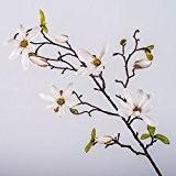 Lot 3 x Tige de magnolia artificiel MILA, 4 fleurs, boutons, blanc, 75 cm - 3 pcs Branche décorative / ...