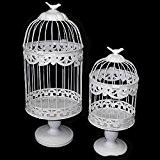 Lot de 2cages à oiseaux décorative en métal blanc sur pieds