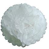 Lot de 5 Pompons Blancs en Papier de Soie de Lights4fun
