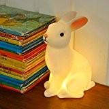lumière de nuit de lapin blanche