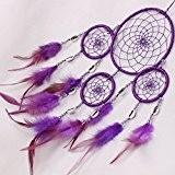 Malloom Plumes Mur Pendaison Décoration Dreamcatcher Décor Circulaire Artisanat (Violet)