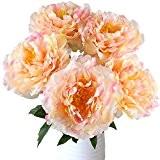 MIHOUNION 5 têtes Fleurs de soie de pivoine artificielle avec verger artificiel Stems Realistic Fake Plant pour maison Table de ...