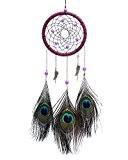 niceEshop(TM) Multicolore Plumes de Paon Capteur de Rêves avec Ornements Plumes, Perles pour Voiture et la Décoration de Maison (Multicolore)