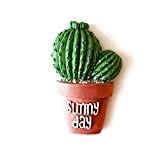 OUNONA Succulent Cactus Frigo Magnet Plante Creative Résine Réfrigérateur Aimants maison Décoration