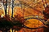Papier Peint Photo Mural INTISSÉ-(27V) PARC PONT -350x260 cm -7 lés 50x260 cm- de haute qualité impression NUMÉRIQUE photo réaliste! ...