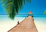 Papier peint photo–Paradise Beach–(284I) Taille 366x 254cm 8pièces–La mer plage palmiers Forêt soleil arbres Paysage Nature Papier peint Motif peint ...