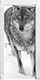 pavanant Wolf en paysage enneigé noir mural / blanc, Format: 200x90cm, cadre de porte, porte autocollants, décoration de porte, porte ...