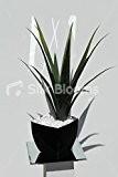 Plante Aloe Vera Vase Arrangement Floral artificiel réaliste